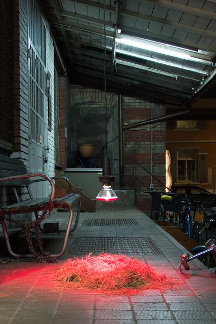 , 'Vogelnest,' 2015, Alfa Gallery