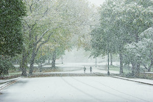 , 'Joggers in Central Park, October Snow Fall,' 2011, Jessica Hagen Fine Art + Design
