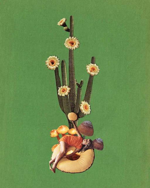 TED FEIGHAN, 'Blooming Cactus', 2019, Subliminal Projects