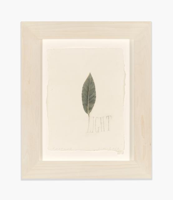 , 'Light,' 2017, Richard Gray Gallery