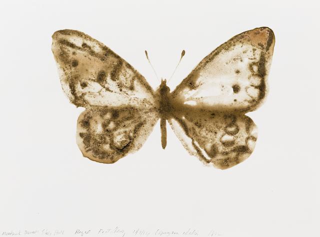 , 'Regal Fritillary (Speyeria idalia),' 2014, Parrish Art Museum