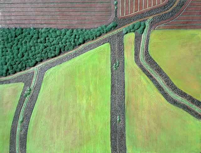 , 'Field Geometry 2,' , Nüart Gallery