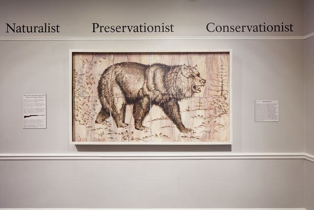 , 'Grizzly Bear Engraving Painting,' 2017, Mark Moore Fine Art