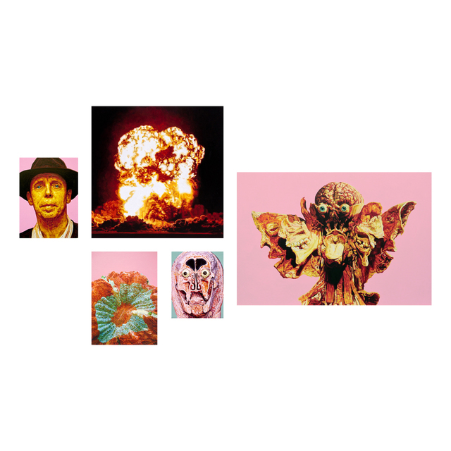 , 'Bloom in Rot,' 2015, Espai Tactel
