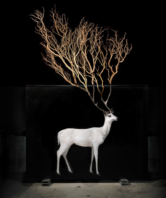 , 'Solomon,' 2017, Marc Straus