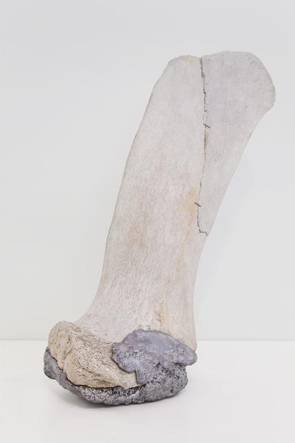 , 'série Fratura (em co-autoria com Lilian Colosso),' 2015, Galeria Mezanino