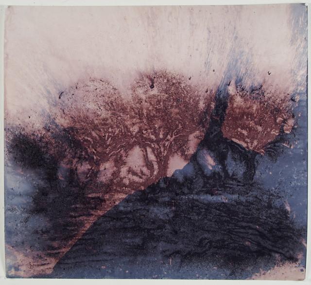 , 'Paysage fracturé,' 2017, ONIRIS - Florent Paumelle