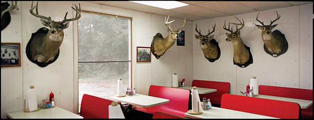 , 'J&R's, Deer Heads, Perry County, AL,' 2002, Spalding Nix Fine Art