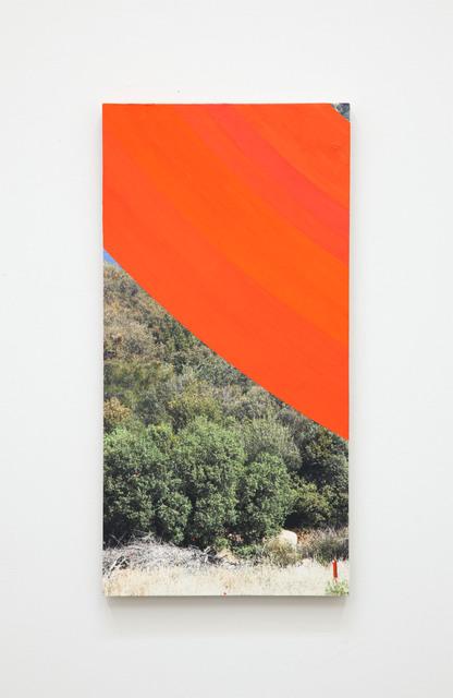 , 'Tan,' 2015, Luis De Jesus Los Angeles