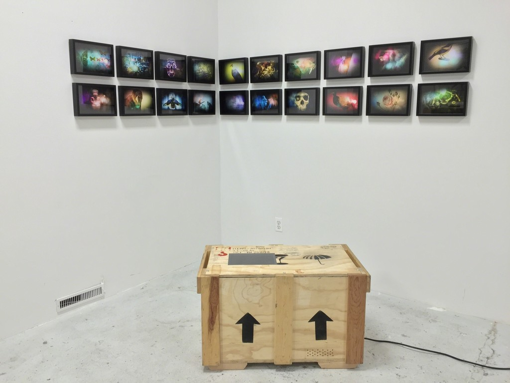 ADOLFO DORING