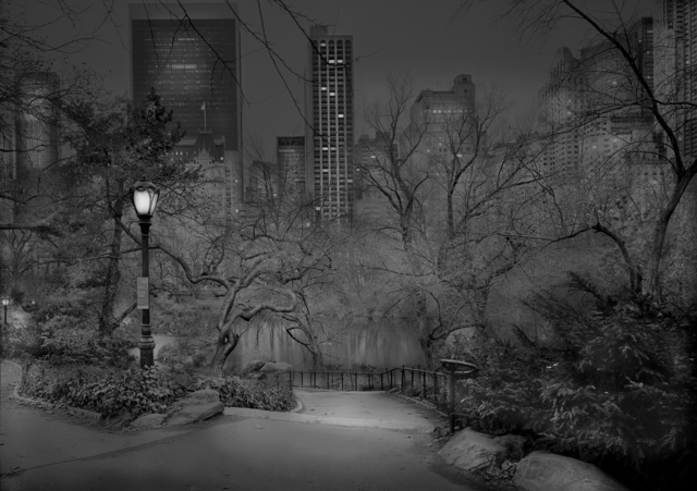 , 'South View #2 - Deep In A Dream - Central Park,' 2012, Holden Luntz Gallery