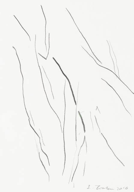 , 'Paper Branch 3,' 2016, Yiri Arts