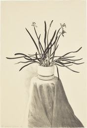 Potted Daffodils (T.G. 259; M.C.A.T. 237)