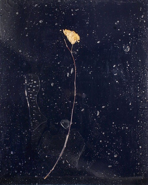 Barbara Salvucci, 'Nera battesimale', 2010, Claudine Gil