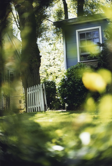 Terri Weifenbach, 'Between Maple and Chestnut 18', photo-eye Gallery