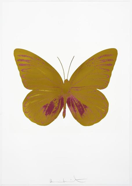 , 'The Souls I - Oriental Gold/Loganberry Pink,' 2010, Paul Stolper Gallery