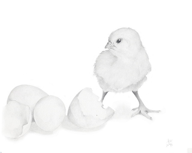 Heather Lancaster, 'Chick with Shell', 2015, Spalding Nix Fine Art