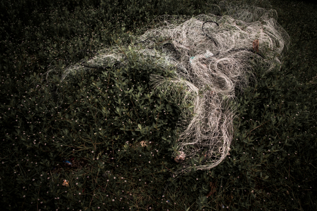 , 'Sin título. De la serie la casa que sangra ,' 2014, myl arte contemporáneo