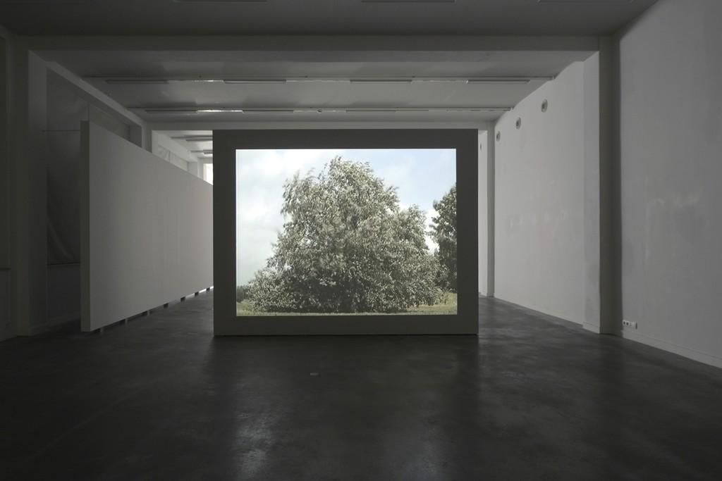 David Claerbout, Boom, Tree, Arbre, 1996 (still) © Isabelle Arthuis
