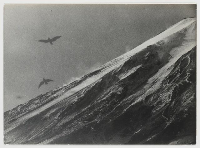 , 'Mt. Fuji and Birds in Flight,' 1953, MEM