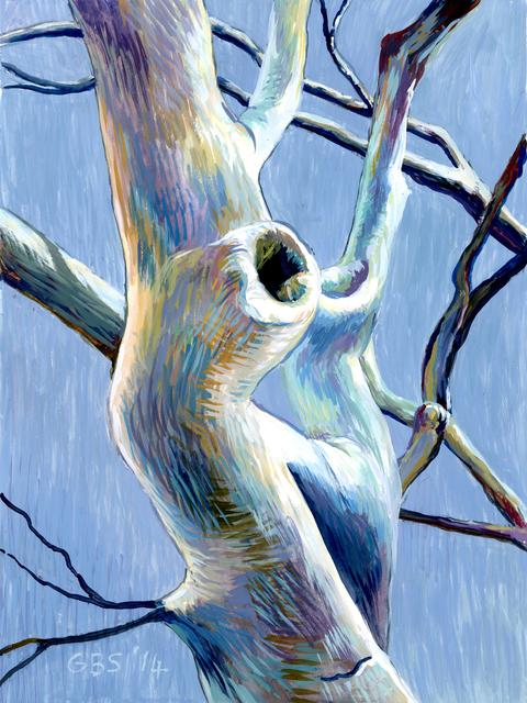 Gillian Bradshaw-Smith, 'Finding Daphne #9 (Focus)', 2014, Ro2 Art