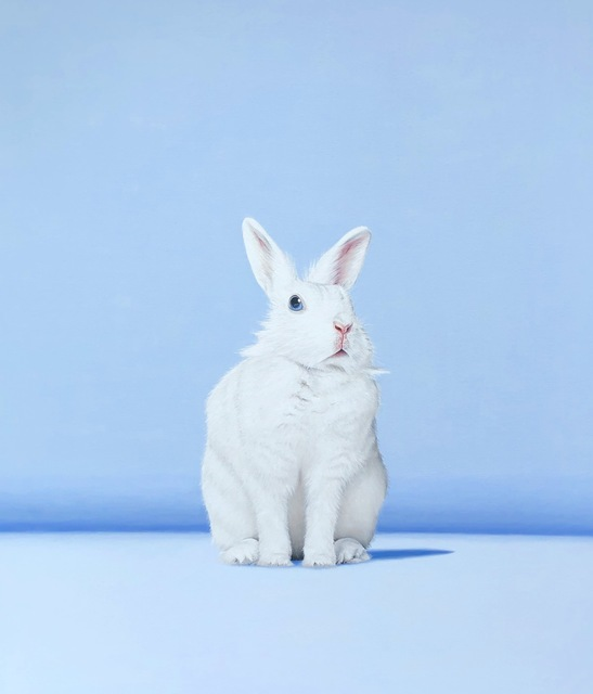 Paula Urzica, 'White Rabbit I', 2019, Galerie de Bellefeuille