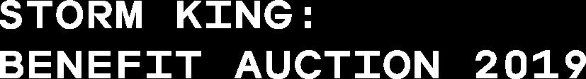 Storm King: Benefit Auction 2019
