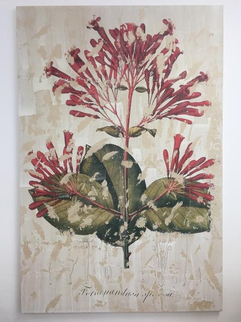 , 'Ferdinandusa Speciosa ,' 2018, Charim Galerie