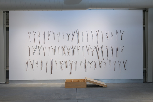 , '127 Willow Forks (This is Who I am),' 2010, di Rosa
