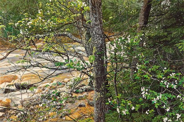 Jeffrey Vaughn, 'Flowering Dogwood Rocky Stream', 2012, Duane Reed Gallery
