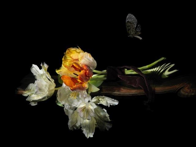 , 'Love's Resurrection,' 2010, Dellasposa