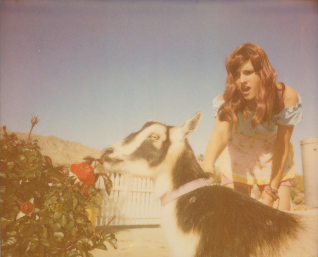 Stefanie Schneider, 'Heather and Zeuss (The Girl behind the White Picket Fence) ', 2013, Photography, Digital C-Print based on a Polaroid, not mounted, Instantdreams