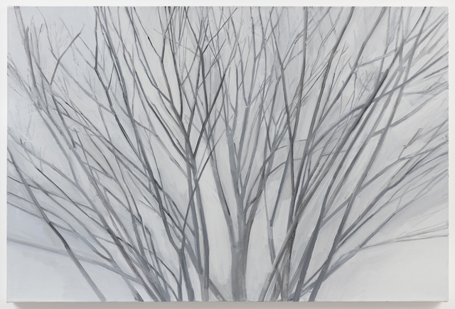 Sylvia Plimack Mangold, 'Winter Maple 2017', 2017, Painting, Oil on linen, Alexander and Bonin