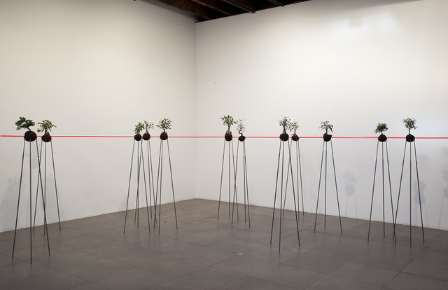 , 'standard eye level,' 2006-2008, Peter Blum Gallery