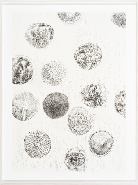 , 'Bioaesthetics I,' 2017, Temnikova & Kasela