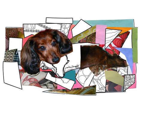, 'Portrait de Priscilla La Petite Chienne Deux :) ,' , ArtStar