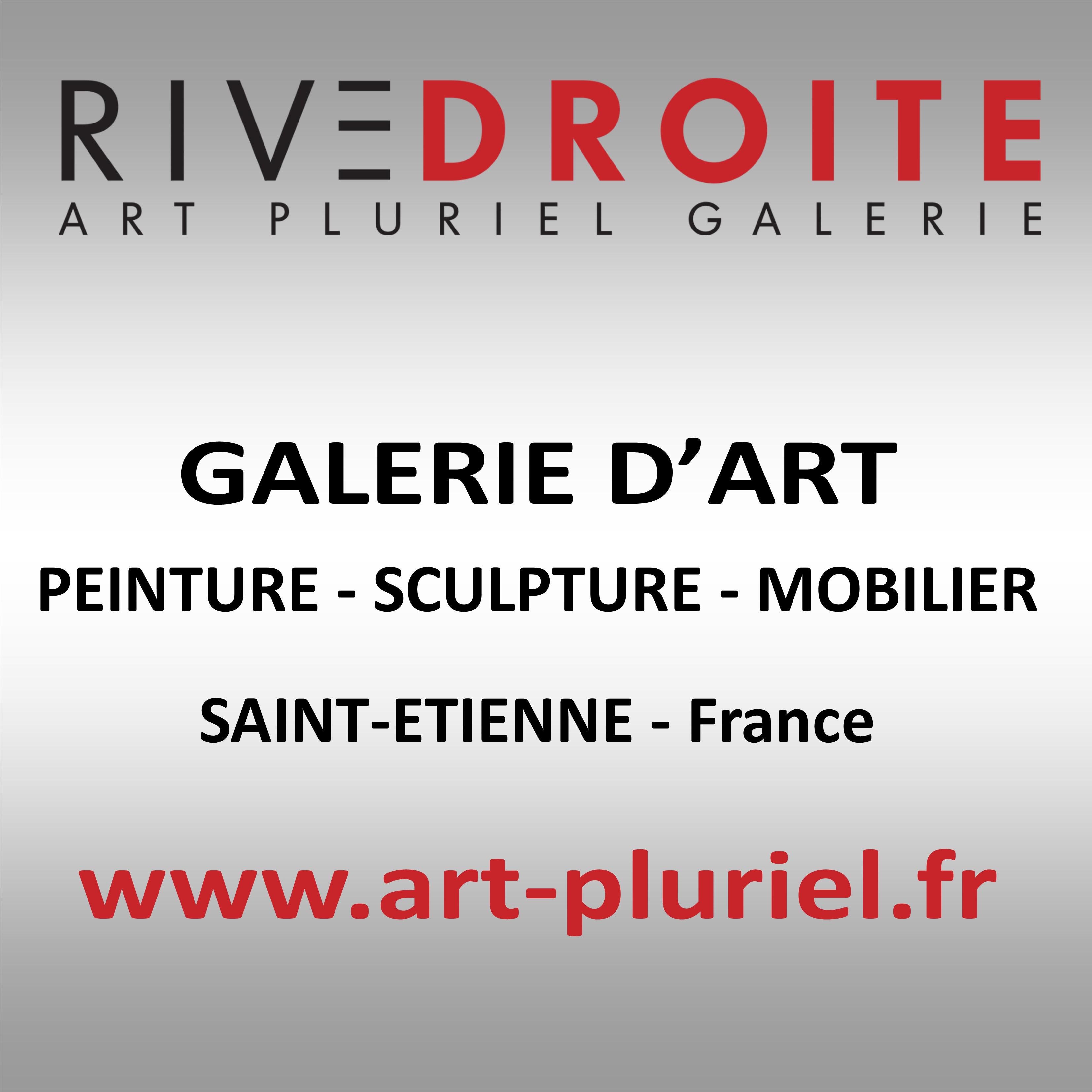 Galerie Art Pluriel Rive Droite