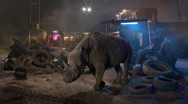 , 'Garage with Blind Rhino,' 2018, Edwynn Houk Gallery