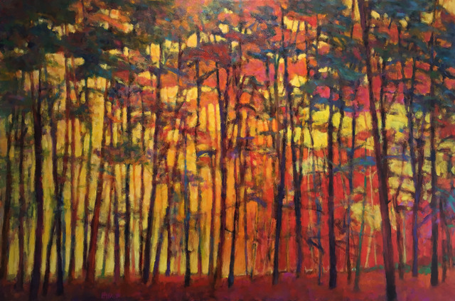 , 'Brightly Lit Woods,' 2015, Madelyn Jordon Fine Art