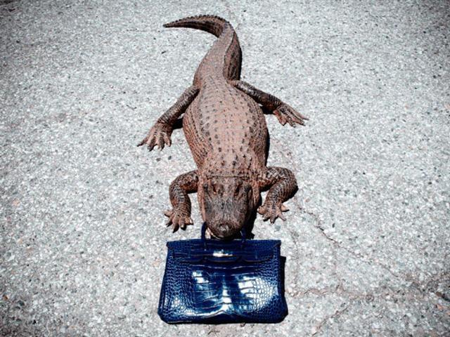 , 'Gator Birkin,' 2012, Imitate Modern