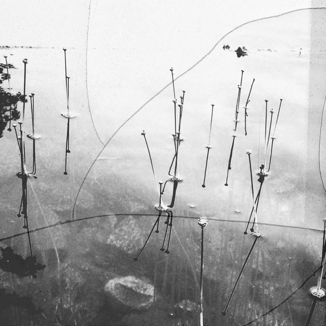 , 'Lake,' 2016, DENK Gallery