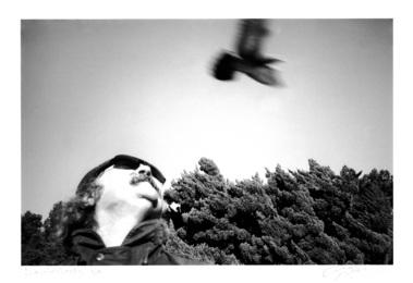 David Crosby (Bird)