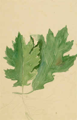 John Steuart Curry, 'Study of Two Oak Leaves', Drawing, Collage or other Work on Paper, Watercolor, Kiechel Fine Art
