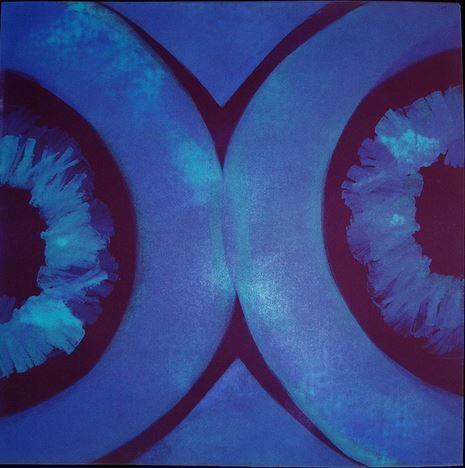 , 'Veils and Circles II,' 2006, Elisa Contemporary