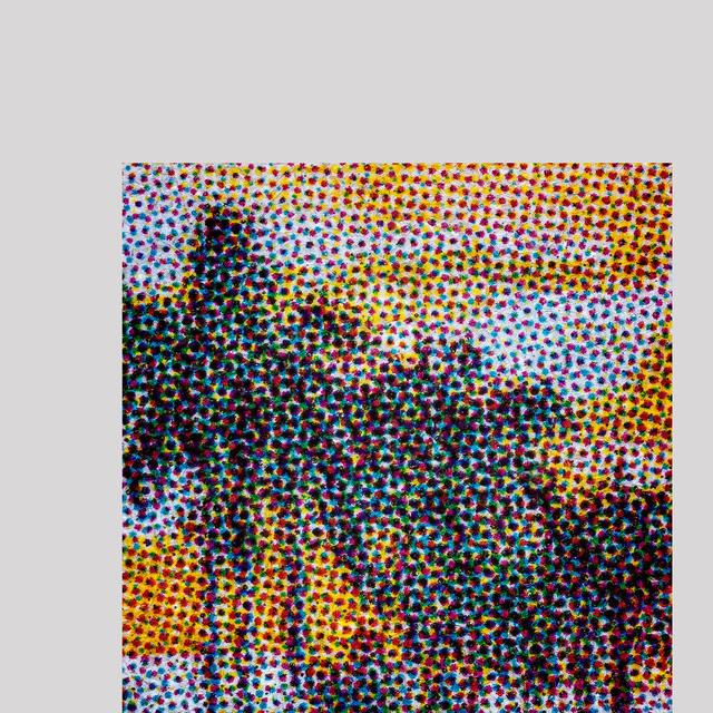 , 'Royostonea Regia No. 12,' 2015, Erin Cluley Gallery