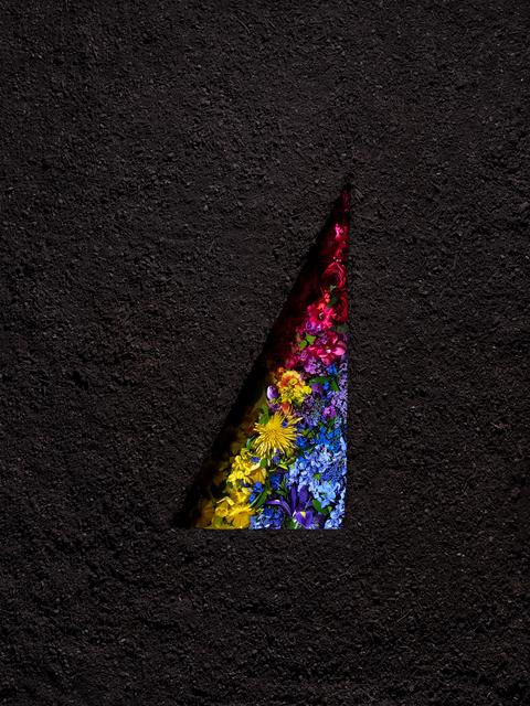 , 'Dirt and Flowers Triad,' 2018, Winston Wächter Fine Art
