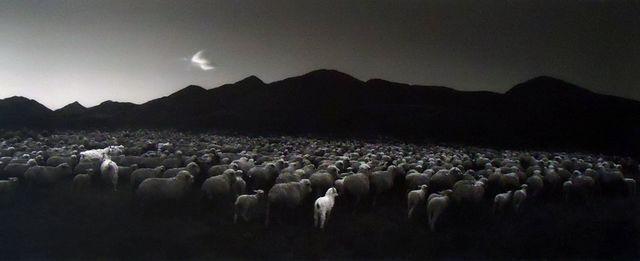 Pentti Sammallahti, 'Barun-Khemchik, Tuva', 1997, Peter Fetterman Gallery
