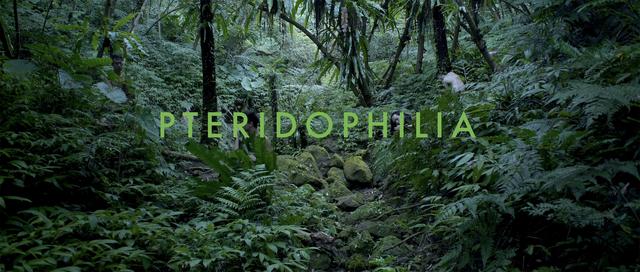 , 'Pteridophilia I 蕨戀 I,' 2016, Edouard Malingue Gallery