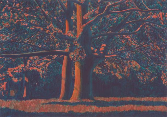 , 'Oak trees, evening,' 2012, Andréhn-Schiptjenko