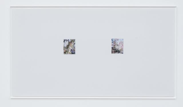 , ' Apple Tree 8,' 2017, Tomio Koyama Gallery